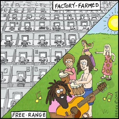What is the difference between factory and free range farming?