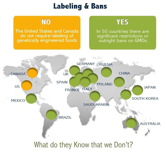 Canada and USA do not require labeling of GMOs. 50 other countries do! What do they know that we don't?