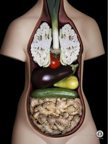 Vegetables are all that your body needs! Amazing ad campaign by JWT for the International Vegetarian Union